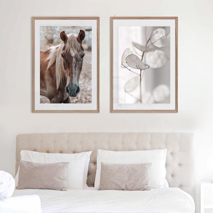 witte blaadjes struik bruin paard
