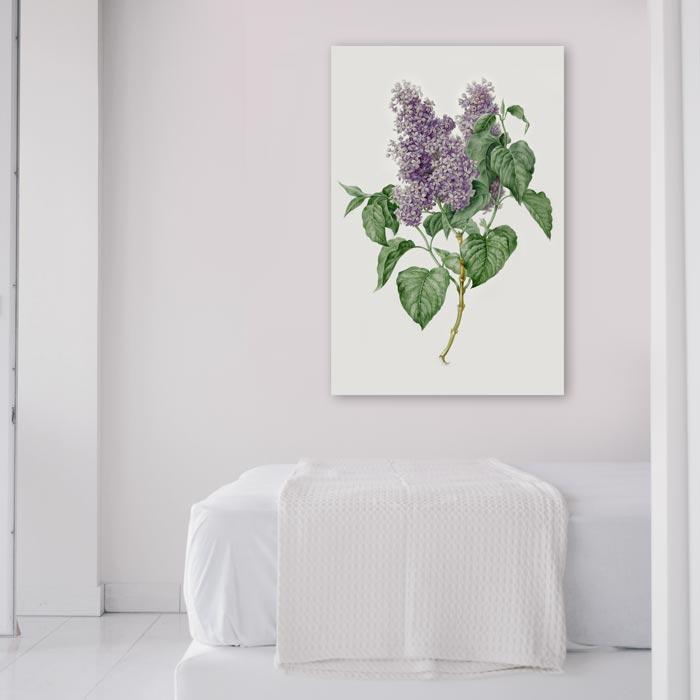 vintage paarse bloem