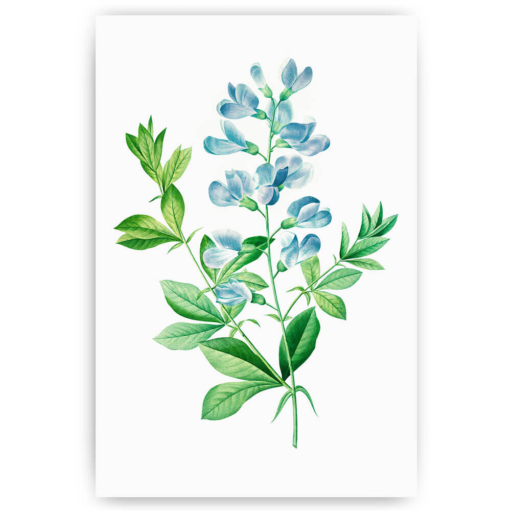 blauwe bloemetjes tak