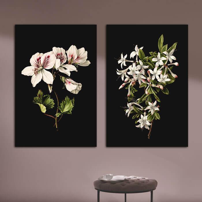 set klassieke bloemen