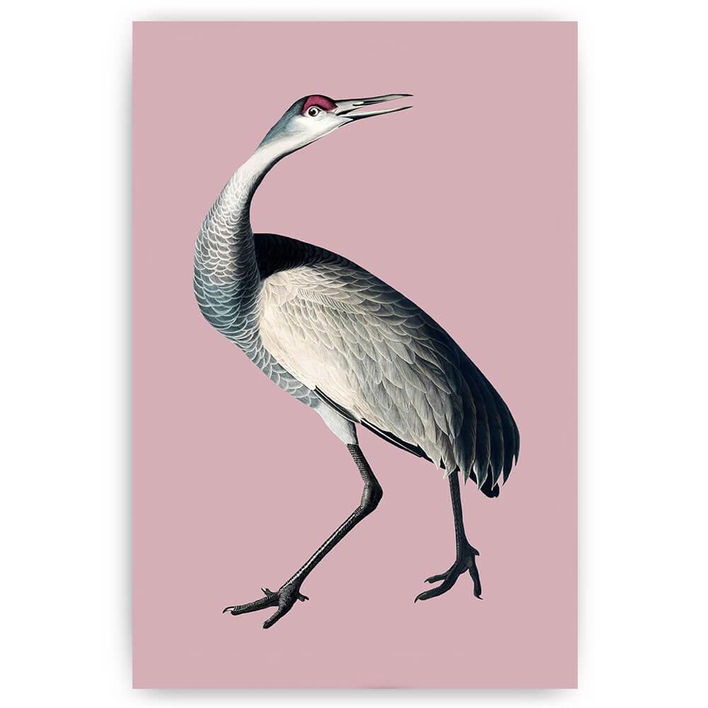 vogel met lange nek