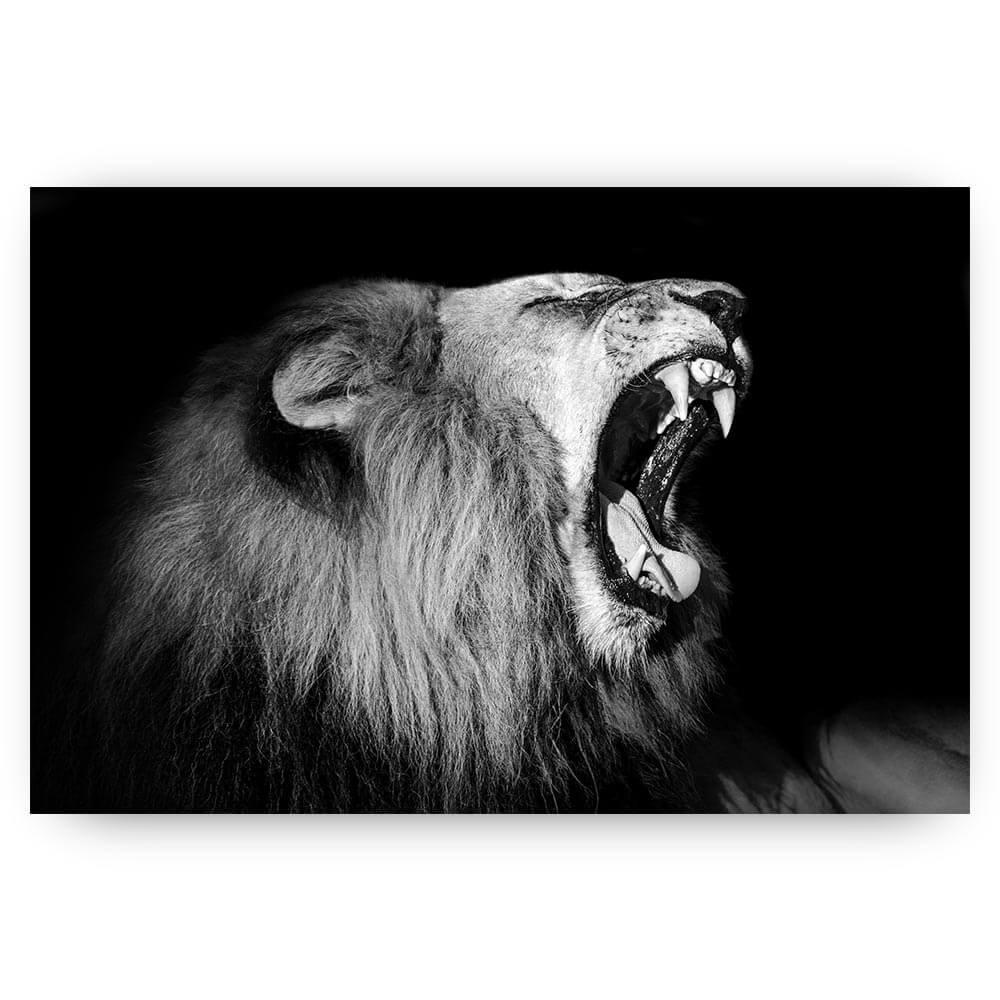 brullende liggende leeuw