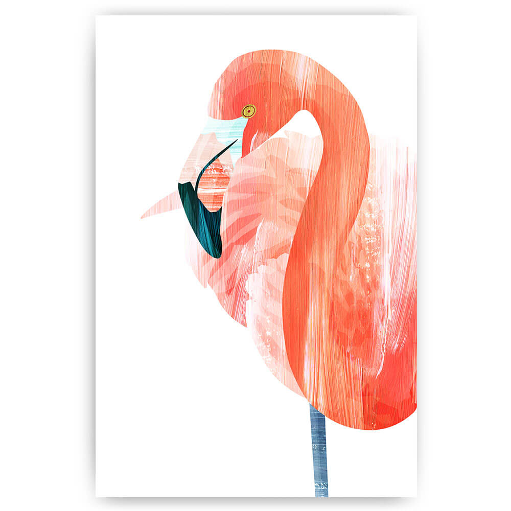 flamingo illustratie