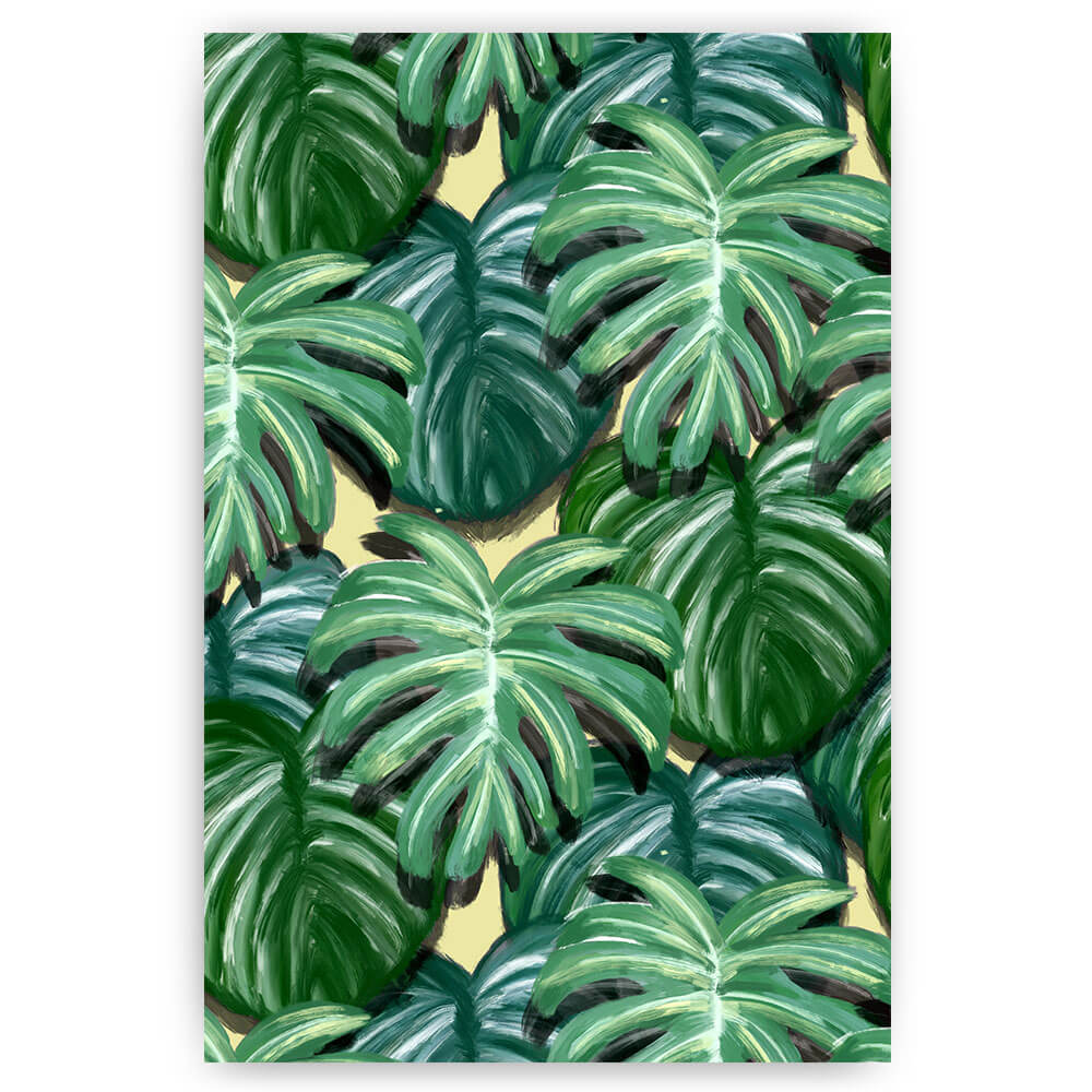 monstera bladeren jungle