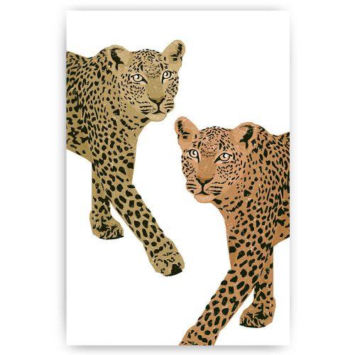 luipaarden illustratie