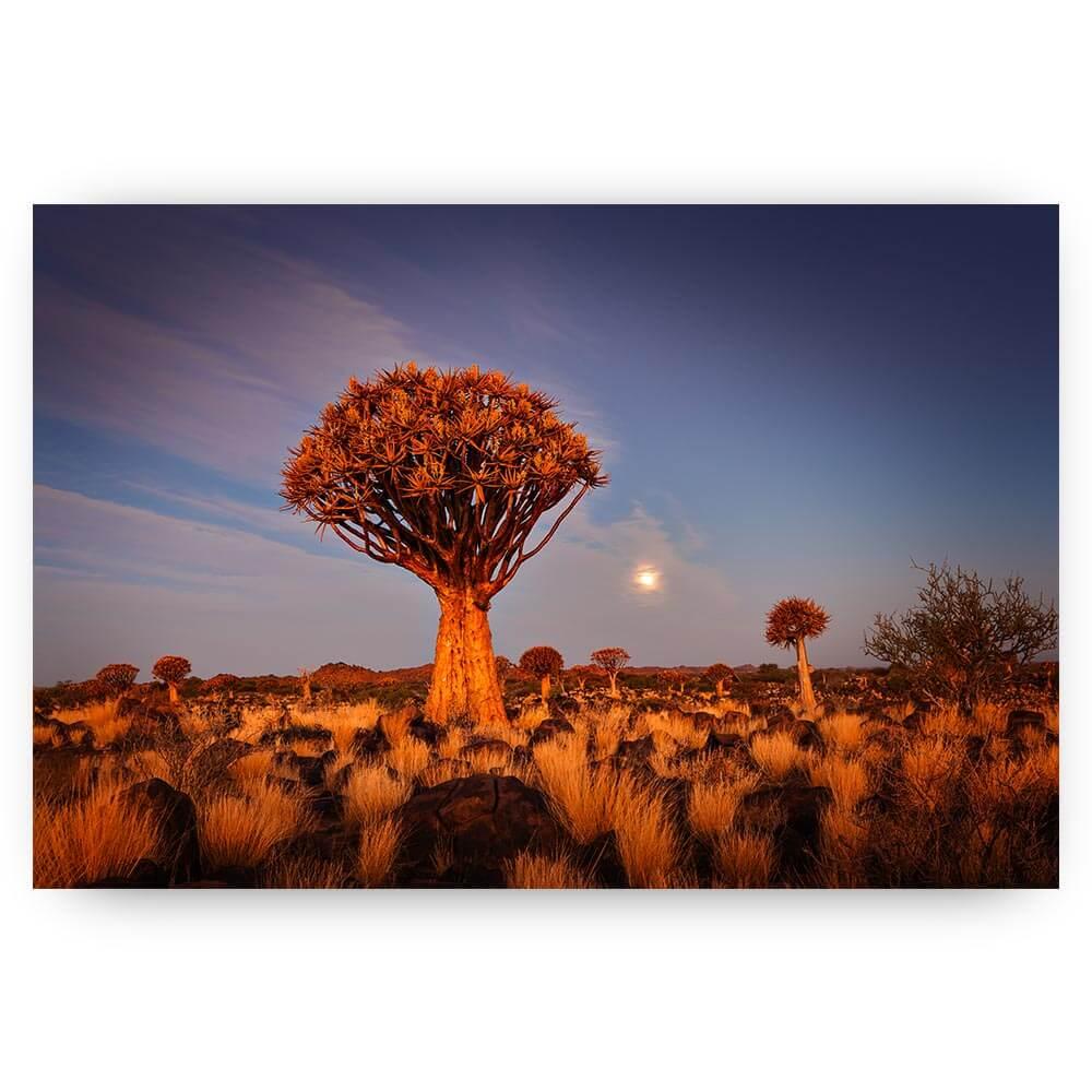 landschap met boom