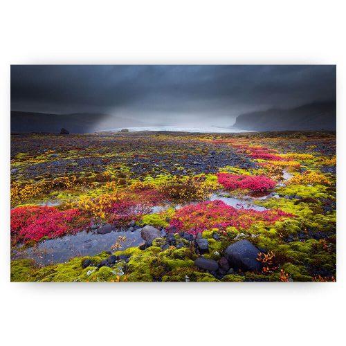 Herst landschap IJsland