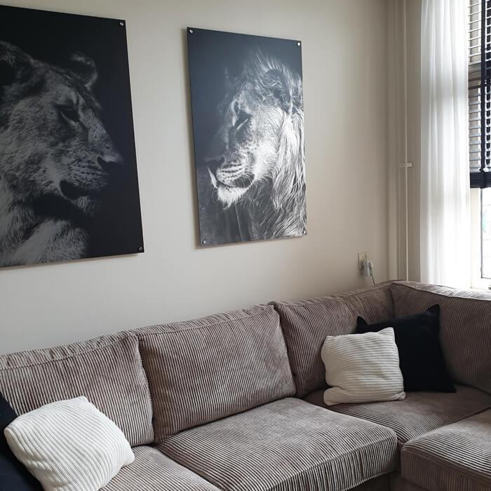 leeuwen set alluminium woonkamer