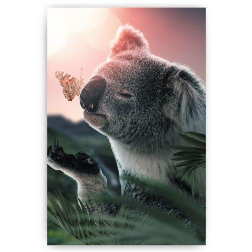 koalabeer met vlinder