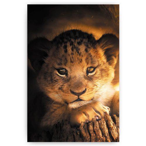 Leeuwen welpje