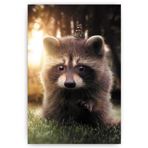 wasbeer dieren print