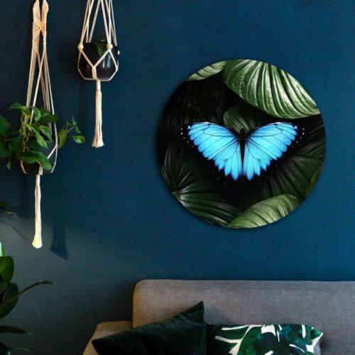 rond schilderij met vlinder