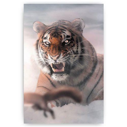 ijzige tijger