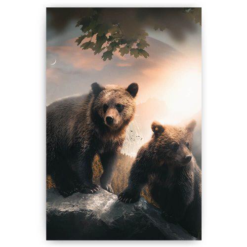 beren op rots