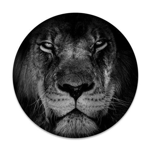 Ronsc schilderij portret leeuw