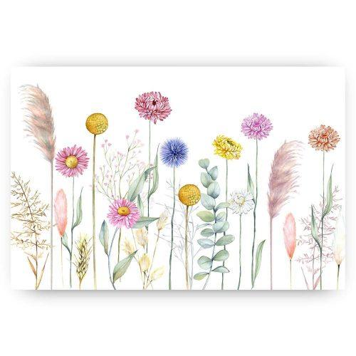 droogbloemen op wit