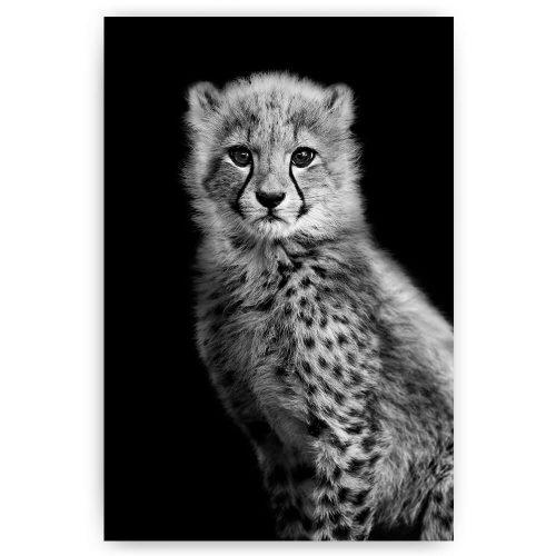 luipaard welp