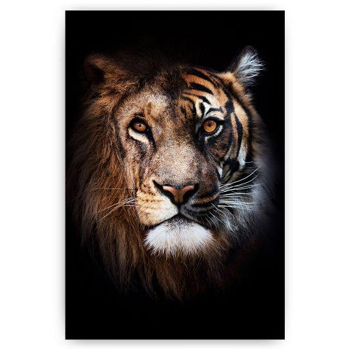 leeuw tijger combi
