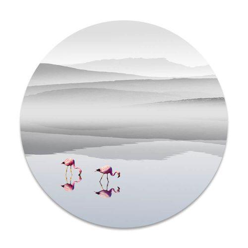 flamingos meer