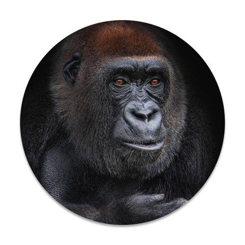 gorilla vrouw