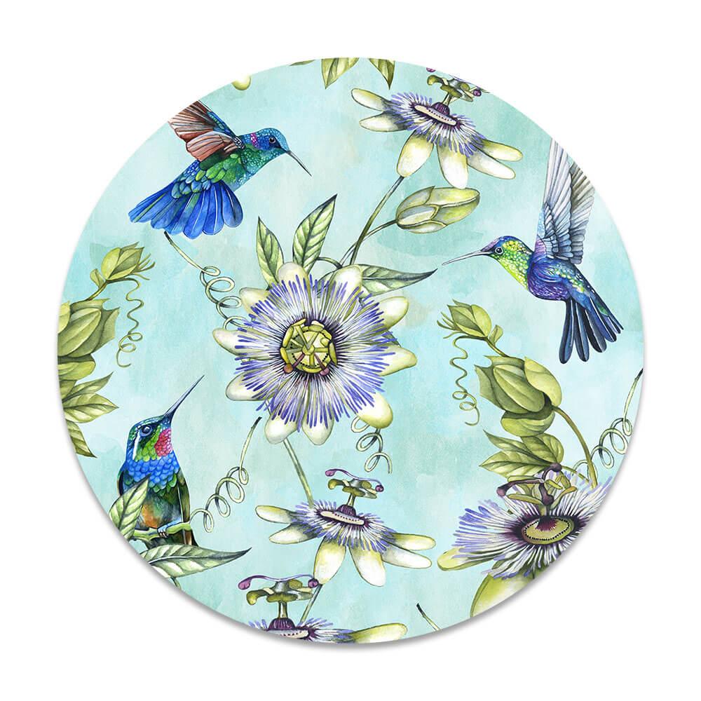 kolibrie vogels
