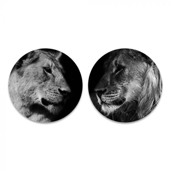 leeuw leeuwin duo zwart wit