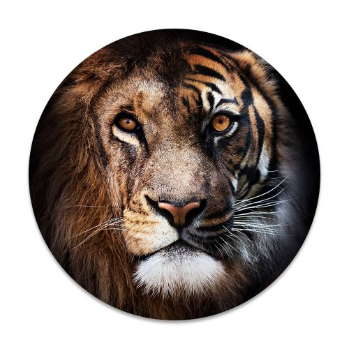 leeuw tijger