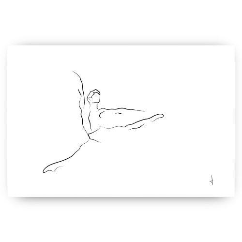 ballerino lijntekening