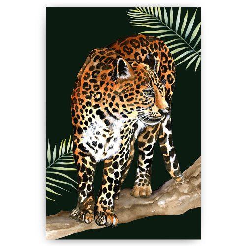 tropisch luipaard panter