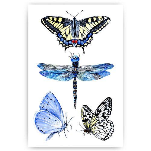 vlinders libelle