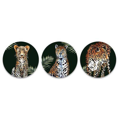 tropisch panter luipaard rond