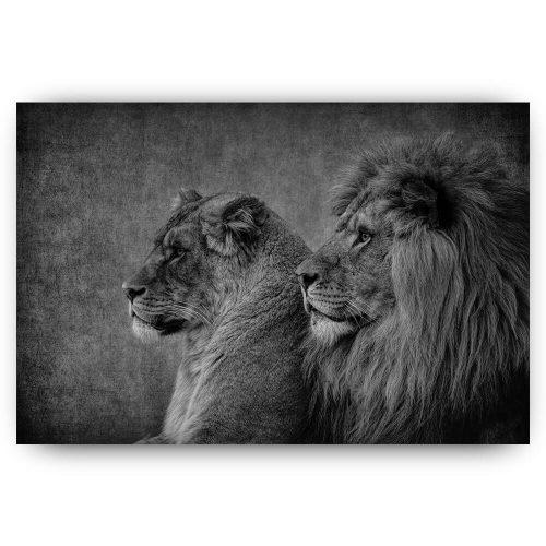leeuw leeuwin