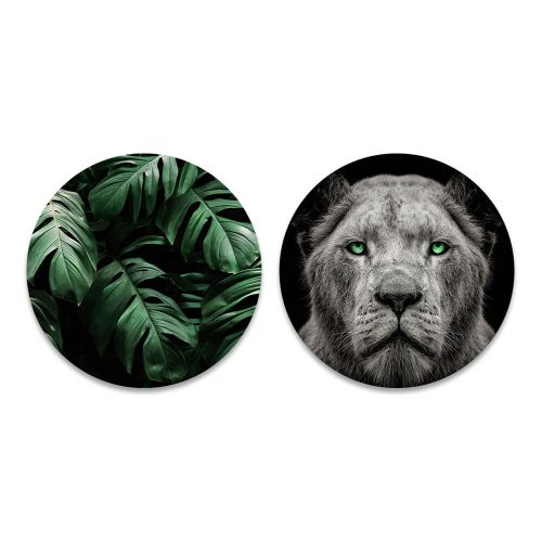jungle leeuwin rond